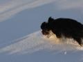 slideshow_winter_01