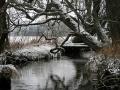 slideshow_winter_06