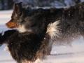 slideshow_winter_07
